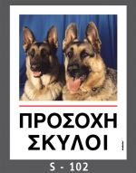 drakotos-dogs-s102