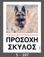 drakotos-dogs-s107