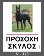drakotos-dogs-s129