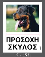 drakotos-dogs-s152