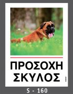 drakotos-dogs-s160