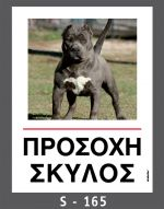 drakotos-dogs-s165