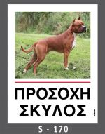 drakotos-dogs-s170
