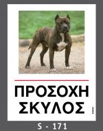 drakotos-dogs-s171