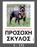drakotos-dogs-s172