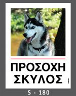 drakotos-dogs-s180