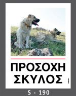 drakotos-dogs-s190